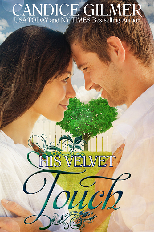 Book Cover: His Velvet Touch
